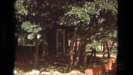 1974: forest area is seen FORT WAYNE, INDIANA Stock Footage