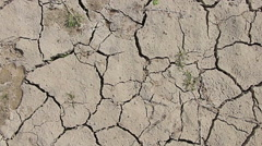 Walking on desert dry soil, first point of view. Climate change, global warming Stock Footage