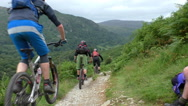Group of mountain bikers riding the trail Stock Footage
