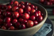 Raw Organic Red Cranberries Stock Photos