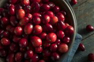 Raw Organic Red Cranberries Stock Photos