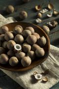 Raw Organic Coconut Coquito Nuts Stock Photos