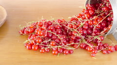 Red currants on wooden table. Harvest of garden berries. Arkistovideo