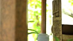 Portrait of young Asian female enjoying peaceful indulgence of Balinese Stock Footage