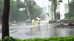 4k People in crosswalk on a street Extreme Wind And Rain During A Typhoon-Dan Stock Footage
