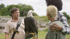 4K Couple at a conservation centre looking at & learning about a bald eagle Stock Footage