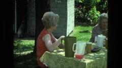 1974: watching you dog making sure he does leave the yard FORT WAYNE, INDIANA Stock Footage
