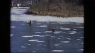 1974: family dog running ahead on frozen ice river FORT WAYNE, INDIANA Stock Footage