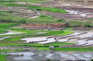 Terraced rice fields in Vietnam Stock Photos