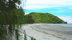 Daintree Rainforest tropical beach with sea sand and lush green foliage in Stock Footage