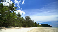 Sea and sand of tropical beach with lush green vegetation in Daintree Rainforest Stock Footage