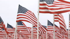 USA Flags Tilt Up To White Frame Stock Footage