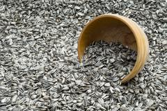 Turned over wooden bowl with sunflower seeds Stock Photos