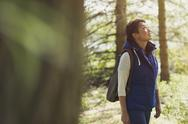 Woman hiking with backpack looking up in woods Stock Photos