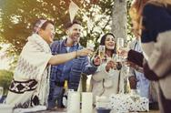 Friends toasting champagne glasses at patio table Stock Photos