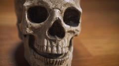 Human Skull dolly parallax shot, shallow DOF Stock Footage