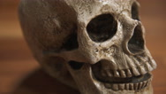 Human Skull front CU tracking shot, shallow DOF Stock Footage