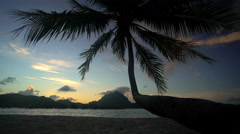 Beach Palm trees at sunset with Overwater Bungalows in ocean Paradise lagoon Stock Footage