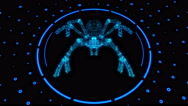 Tarantula In Circle Stock Footage