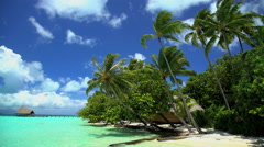Beach Palm trees in tropical aquamarine lagoon a Paradise luxury vacation resort Stock Footage