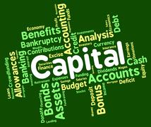 Capital Word Shows Rich Asset And Affluence Stock Illustration