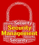 Security Management Indicates Head Unauthorized And Administration Stock Illustration