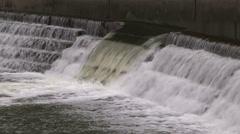 Toronto autumn salmon run on Humber river Stock Footage