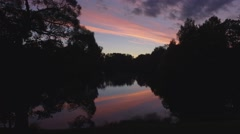 Sunset in the Woods by the river Stock Footage