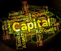 Capital Word Shows Rich Asset And Affluence Piirros