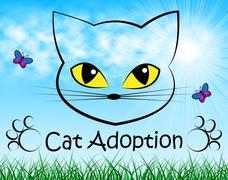 Cat Adoption Meaning Pedigree Adopting And Feline Stock Illustration