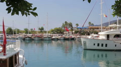 Navy Pier, tourist boat Stock Footage