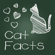Cat Facts Representing Cats Knowledge And Feline Stock Illustration