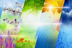 Four seasons of year collage Stock Photos