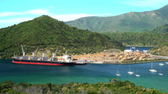 Commercial Freight ship loading timber at Lumberyard and yachts in harbor Picton Stock Footage