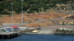 Log grabber at deforestation lumberyard amongst timber for manufacturing export Stock Footage
