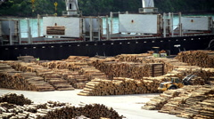 Lumberyard in Picton harbor and log grabbers loading timber on cargo ships South Stock Footage