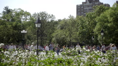 Tourist taking picture with DSLR camera in Washington Square Park summer day NYC Stock Footage