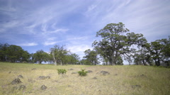 Wide Shot Of Field In The High Desert In Oregon Stock Footage