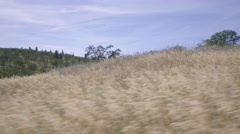 Steadicam Moves Fast In Open Meadow In The High Desert Of Oregon Stock Footage