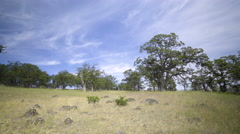Wide Shot Of A Field In The High Desert Of Oregon, Truck Pulls Into View Stock Footage