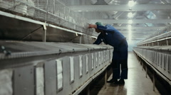 Farmer on the rabbit farm Stock Footage