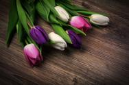 Bouquet of tulips on wood Stock Photos