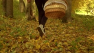 Slender girl walking on fallen leaves through autumn forest holding a picnic Stock Footage
