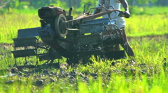 Java, Indonesia - August 2016: Harvesting and ploughing rice field in slow Stock Footage