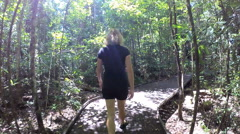 POV walking on jungle boardwalk through lush tropical vegetation of Daintree Stock Footage