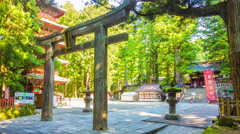 Zoom Out Time-lapse Nikko Japan Toshogu Shrine Torii Gate Pagoda Serene Morning Stock Footage
