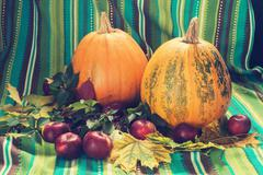 Pumpkins and apple among the fall leaf Stock Photos