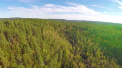 Camera flying high above large spruce tree forest Stock Footage