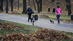 People in park, walking of dogs Stock Footage