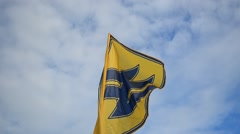 "Flag of the regiment ""Azov"". Stock Footage"